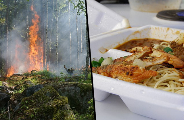 skogsbrand ranson
