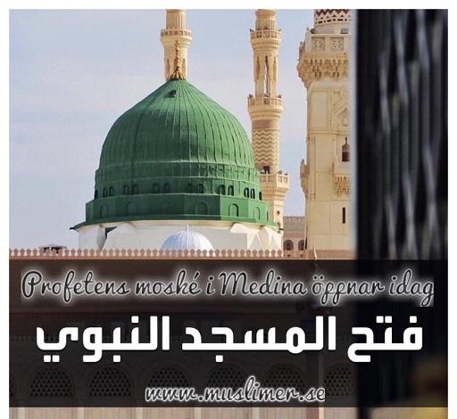 Profetens moské öppnar igen