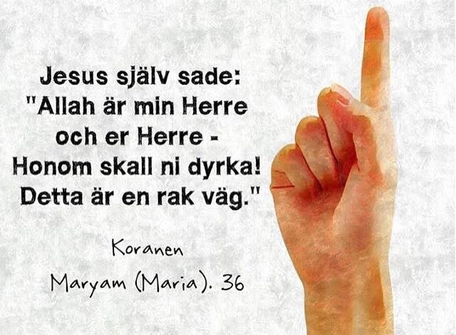 Jesus, Marias son